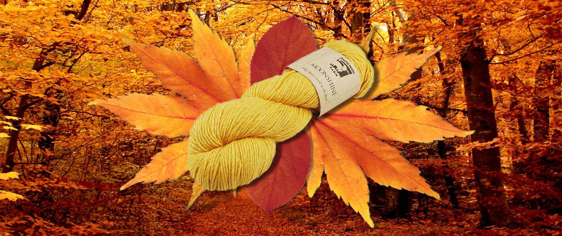 Wolle Herbst Slider