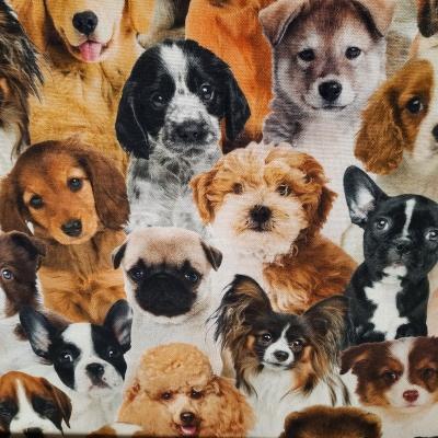 Baumwolle Webware, Canvas Digitaldruck Hunde - 20 %