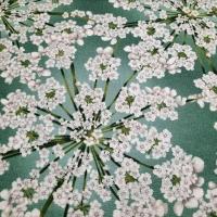 Wunderschöner Patchworkstoff Kirschblüte by Hoffmann Fabrics