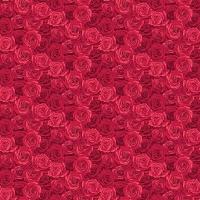 Sommer Garten Rosen rot
