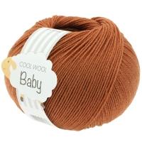 Cool Wool Baby kürbis