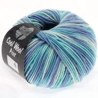 Cool Wool Print 728